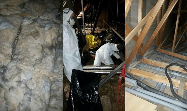 Loft Insulation Clearance